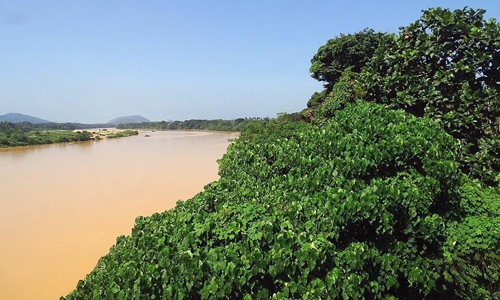 Brauner Fluss