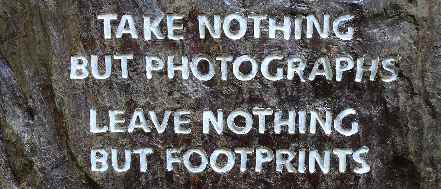 Spruch am Baum: Take nothing but photographs, leave nothing but footprints