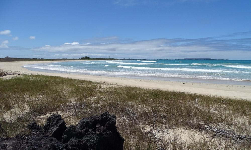 Strand auf Isabela mit blauem Himmel und Wasser