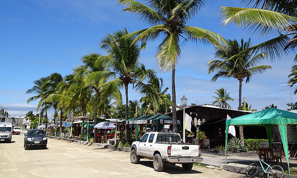 Sandstraße mit Palmen und Autos