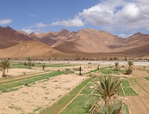 Souss Massa: Im Hinterland von Agadir