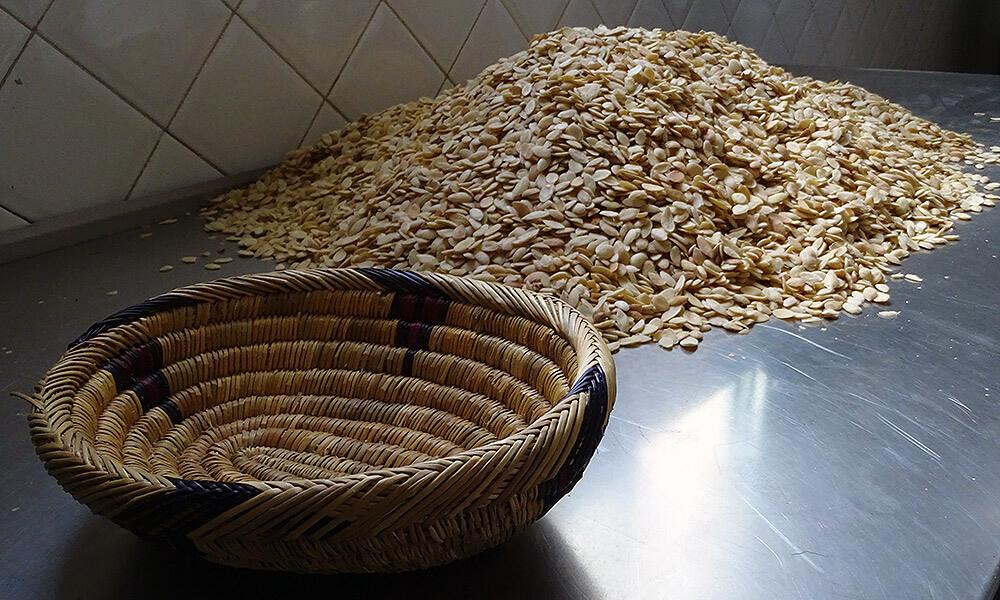 Ausgelöste Arganfrüchte neben einem Korb