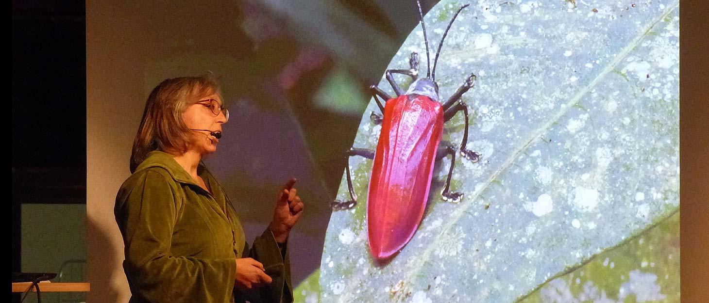 Sabine vor Leinwand mit Bild vom Käfer