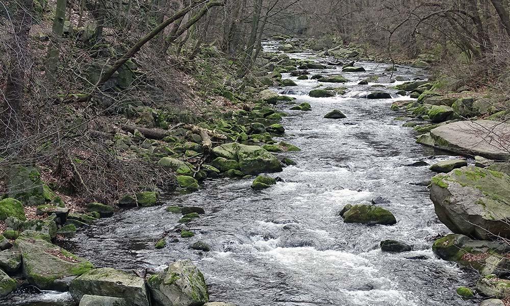 Fluss mit Felsen