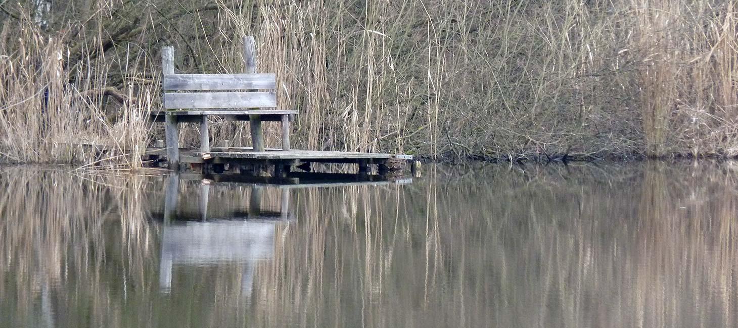 Bank am Ufer eines Sees
