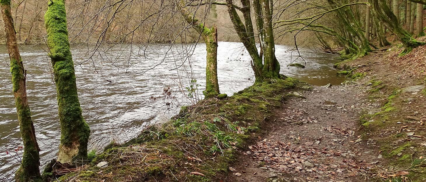 Weg am Fluss Ourthe entlang