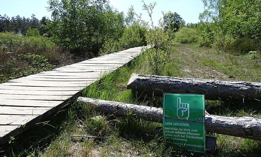 Holzbohlenweg