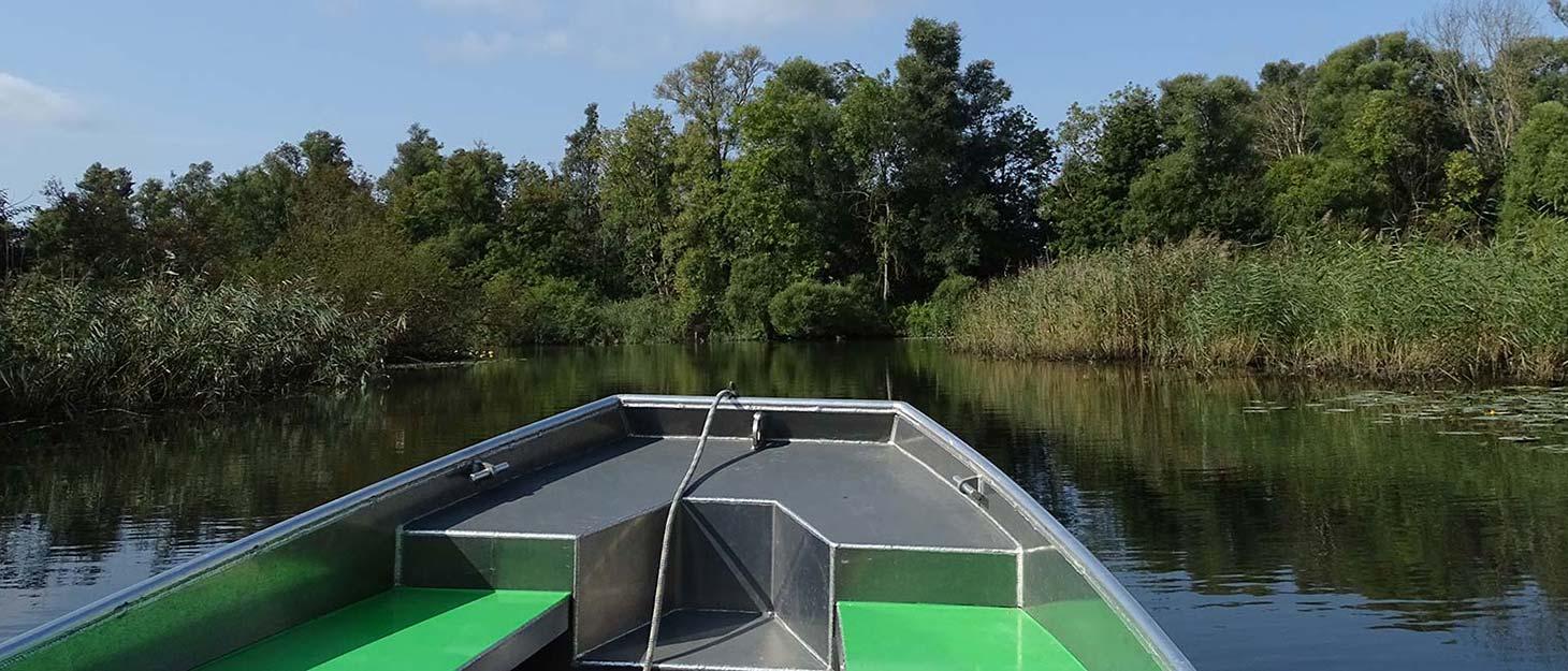 Boot auf Wasser im Nationalpark de Biesbosch