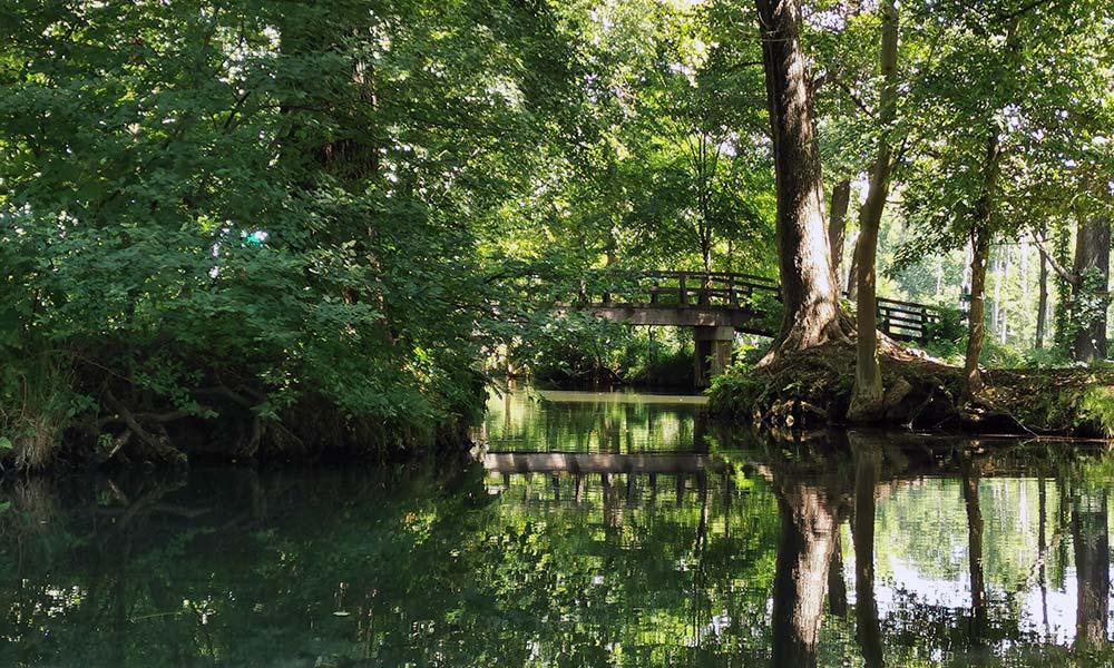 Brücke über Fließ im Spreewald