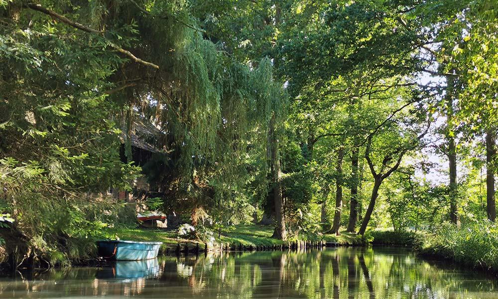 Boot am Ufer der Spree