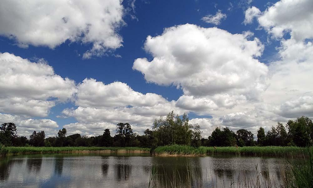 Wolen spiegeln sich im Teich