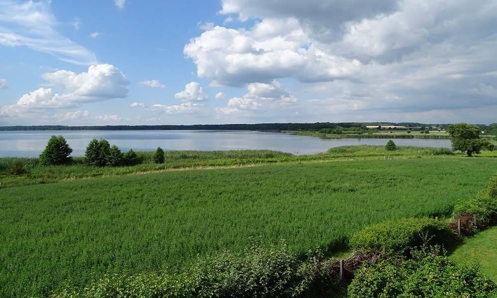 Blick über den Grimnitzsee