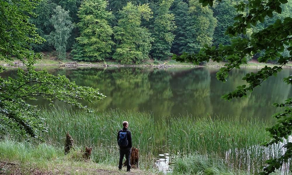 Mann steht am See im Wald