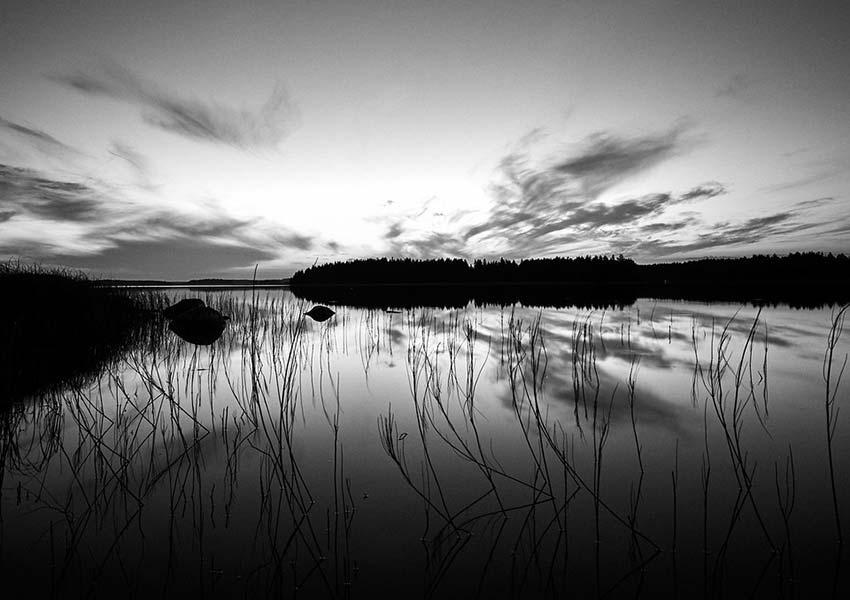 Insel im See in schwarzweiß