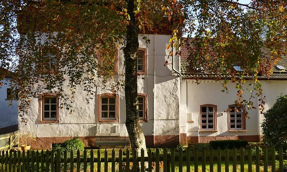 Altes Haus hinter einem Baum