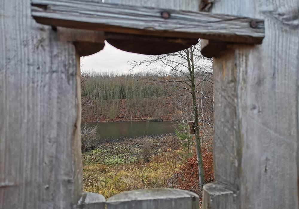 Ausblick durch ein Holzfenster auf einen See