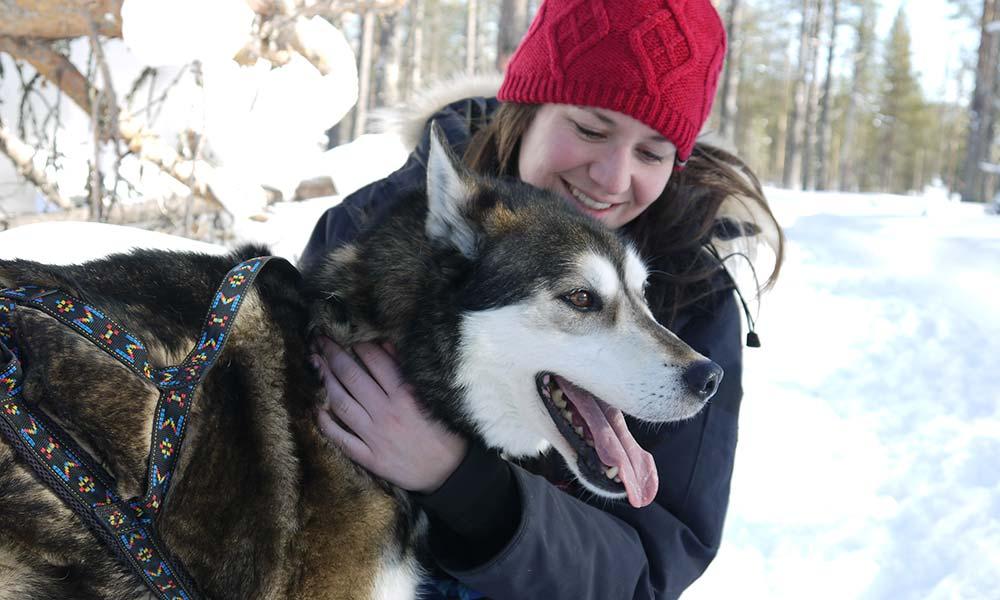 Schlittenhund und Frau im Schnee