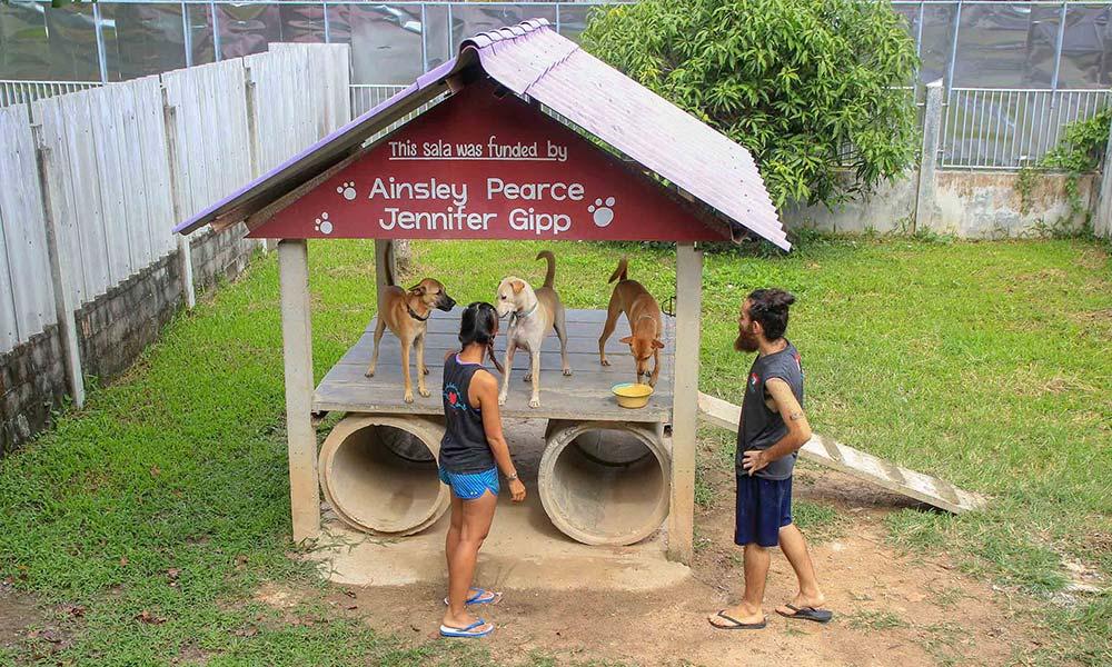 Zwei Menschen auf Hundespielplatz