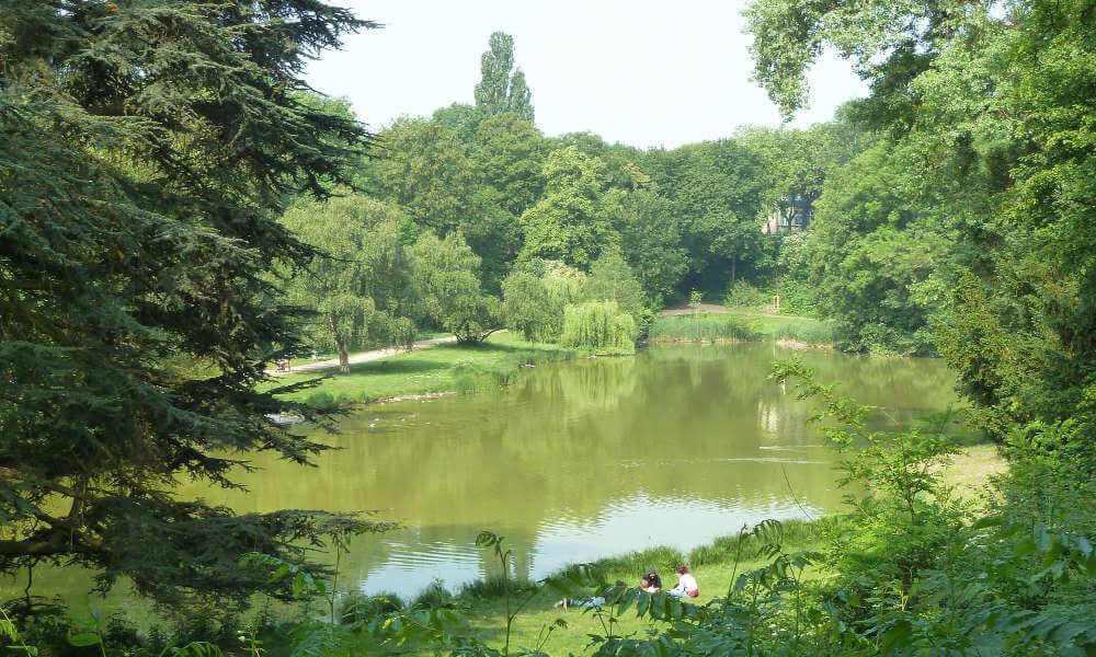See im Klettenbergpark, umrahmt von Bäumen