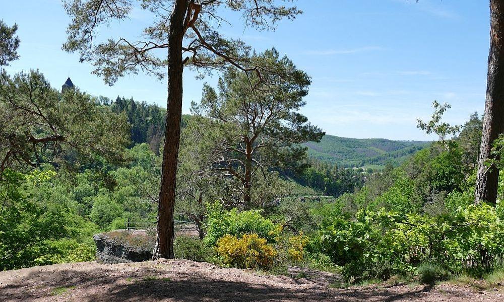 Blick vom Aussichtspunkt im Wald auf die Burg Nideggen