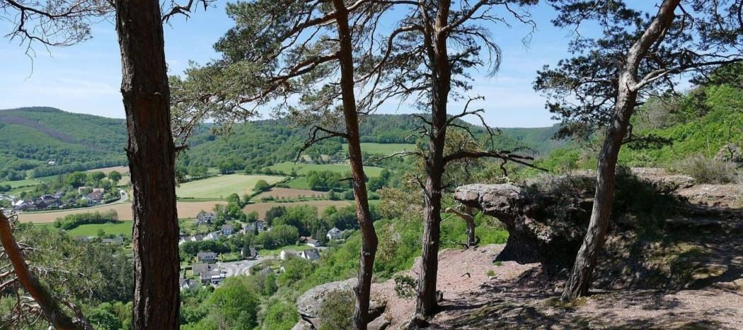Blick vom Buntsandsteinfelsen ins Rurtal